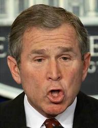 Les 50 plus belles perles de George Bush