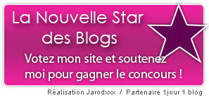 "La nouvelle ""star"" des blogs ?"